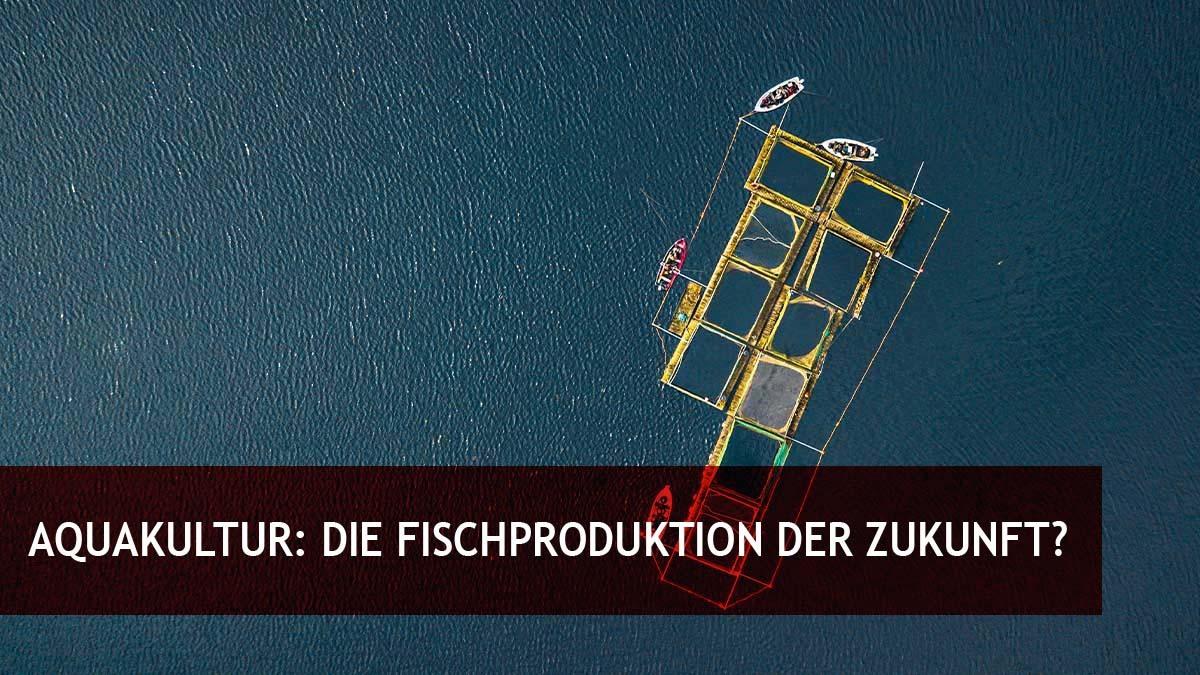 Aquakultur: Die Fischproduktion der Zukunft?