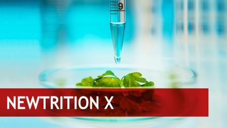 Personalisierte Diäten bieten maßgeschneiderte Ernährungslösungen – auf den individuellen Organismus zugeschnitten