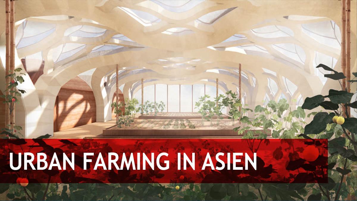 Asiatischer Markt für Urban Farming