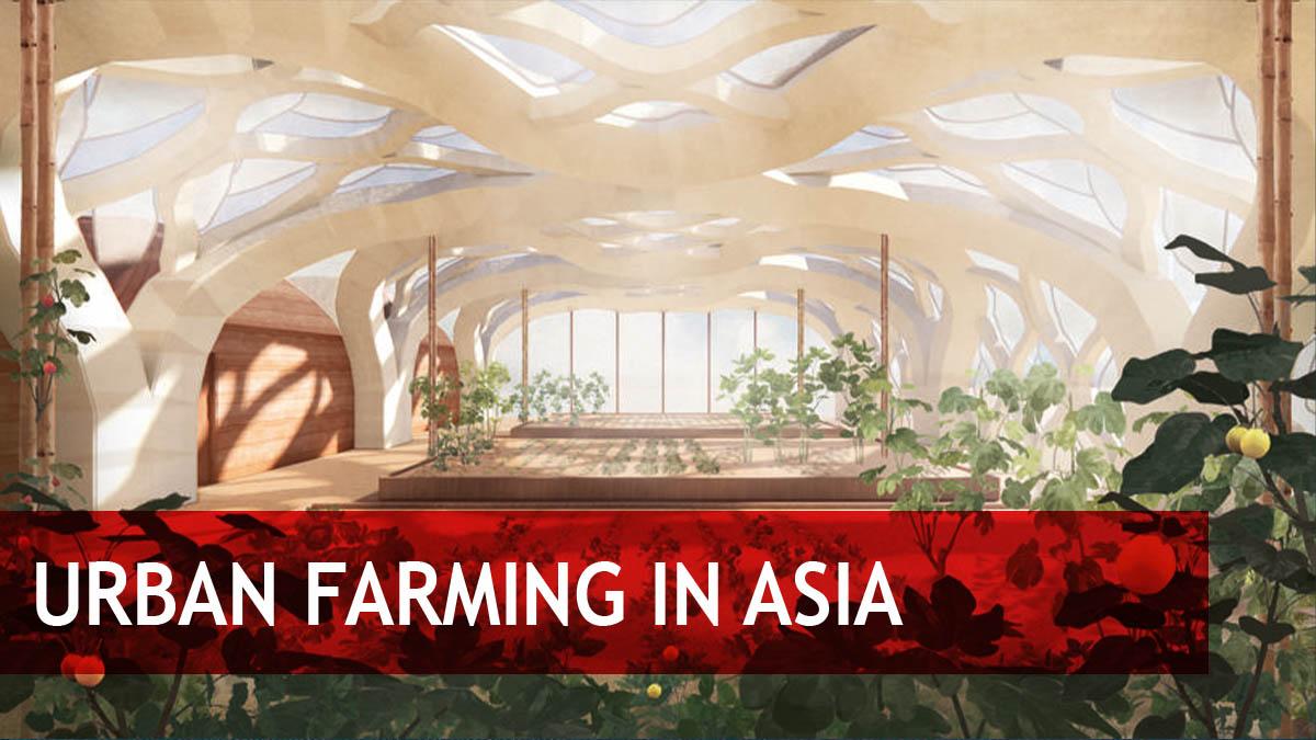 Asian Urban Farming Market