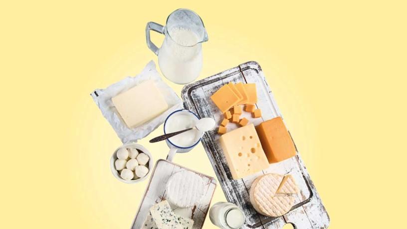 Zur Fachmesse Anuga Dairy - Milch- und Molkereiprodukte