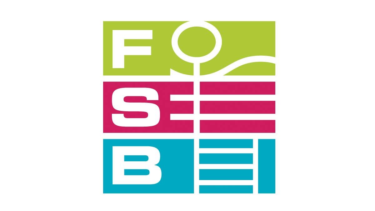 FSB Logo coloured