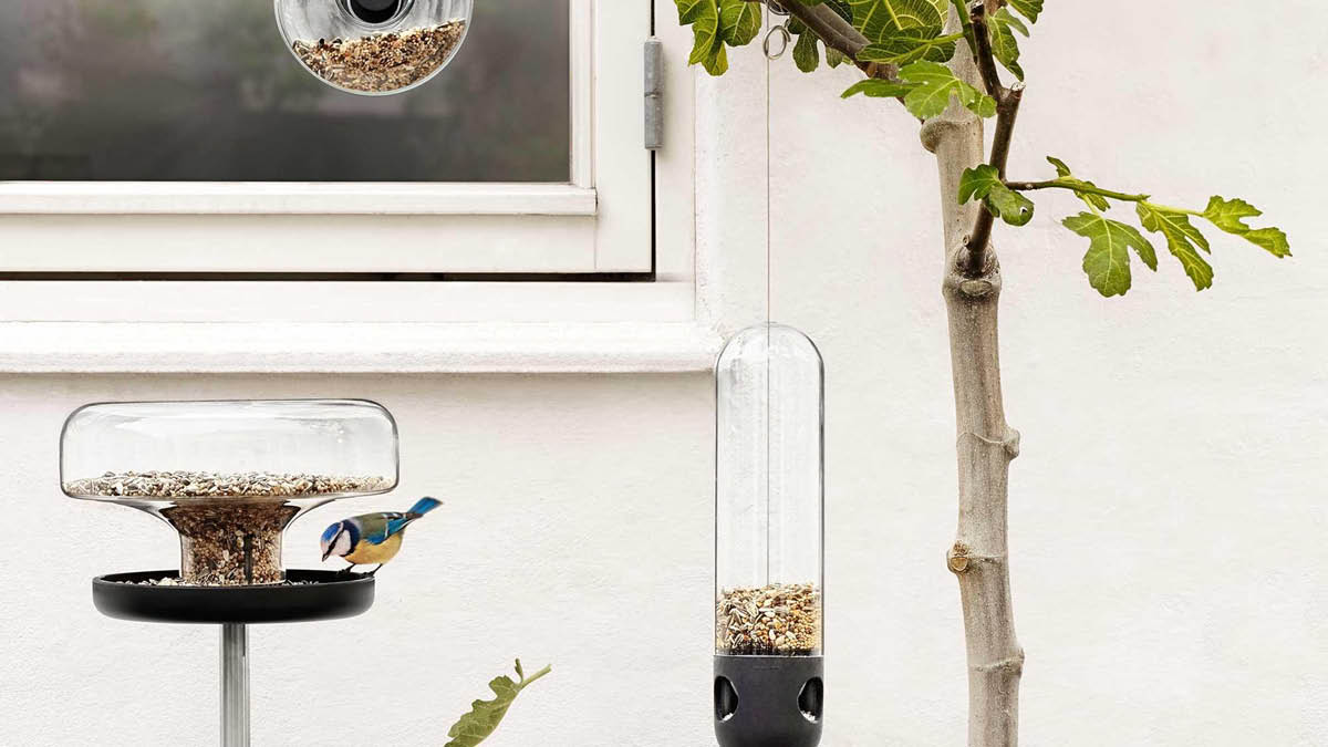 Hospitality for feathered friends