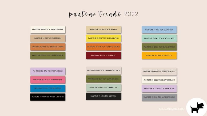 Color Chart / Pantone color trend for 2022