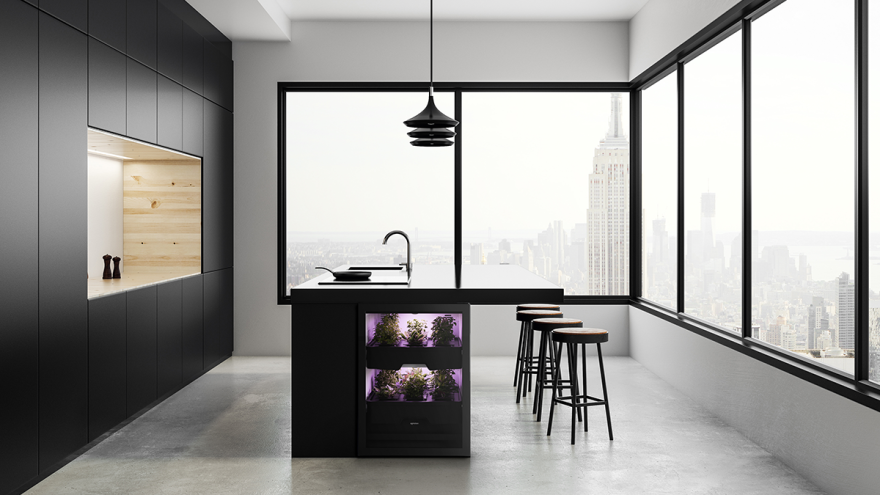 An open-plan kitchen design with black fronts and large panoramic windows.