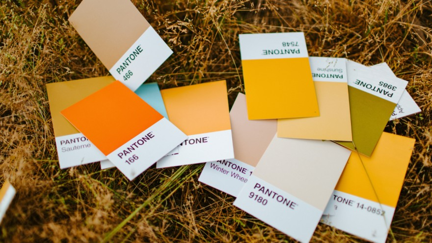 Color trends 2022 are warm and cheerful.
