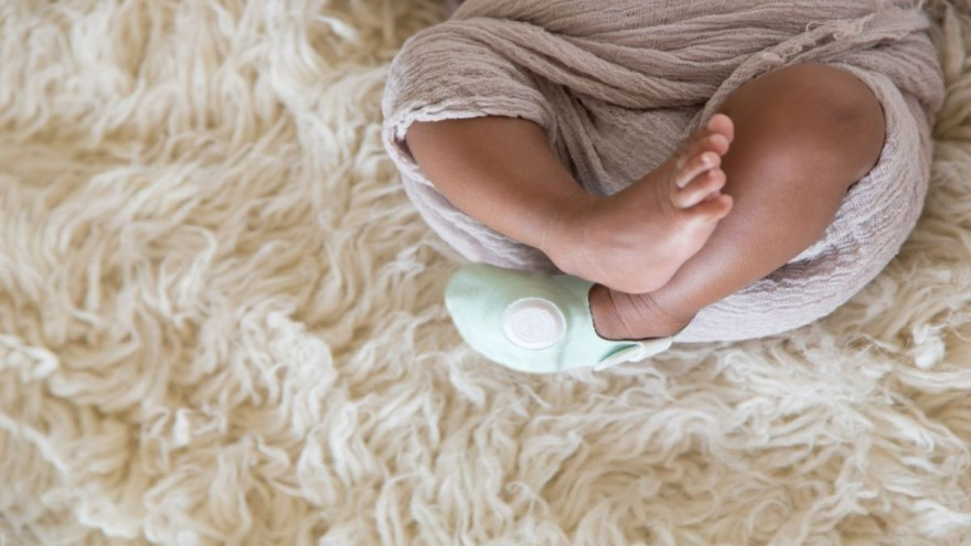 Smart Socks by Owlet Baby Care